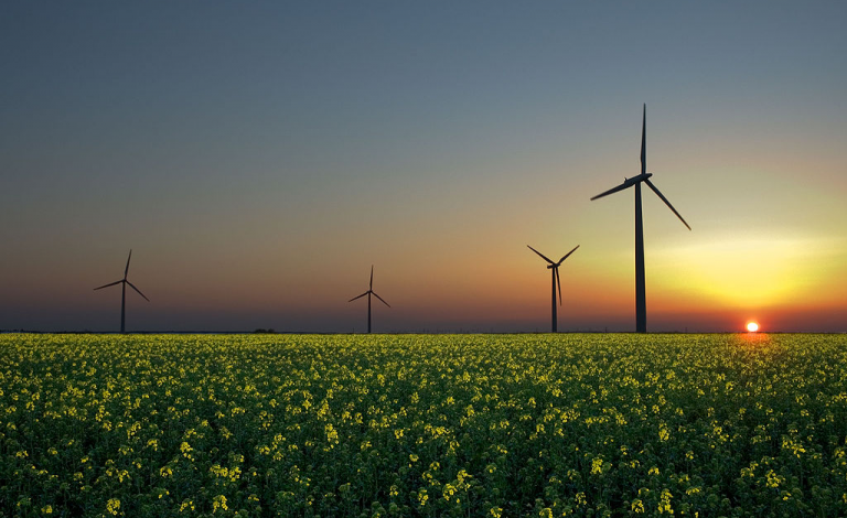 Zimbabwe puts wind energy plan on hold