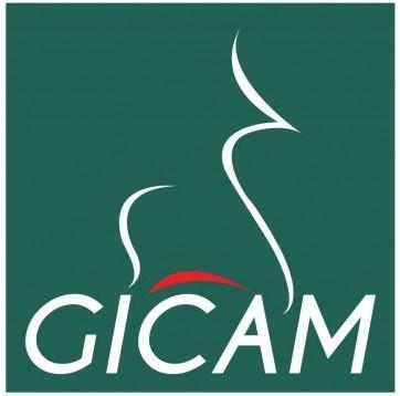 GICAM