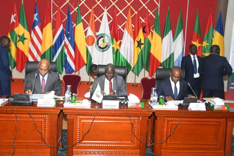 ECOWAS resorts to sanctions over Guinea and Mali coups