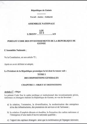 CI Guinée 2015